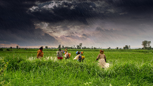 11 Photographs That Will Show You How Beautiful India Is During The Monsoon