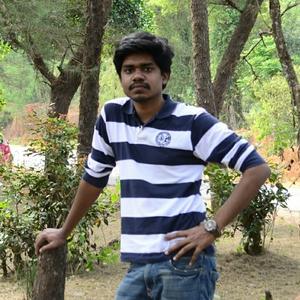 Jagadeesh Raja T Travel Blogger