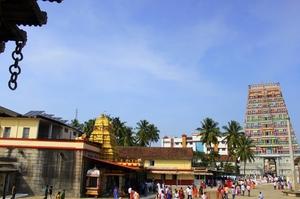 Vidyashankara Temple-Sringeri,Karnataka