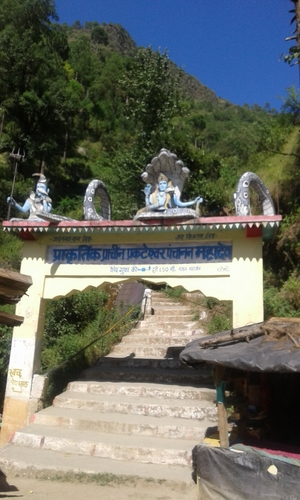 Virtual Traveling of Dunda, Uttarkashi - Captured in 5 picturesque photographs