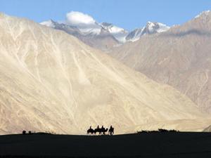 Ladakh Yoga and Adventure Tour