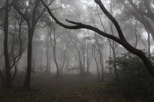 The Land Of Mists and Wonders: Matheran