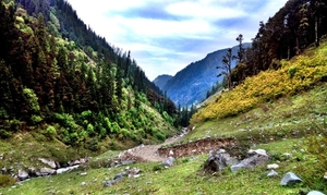 What trekking across Himalayas looks like!