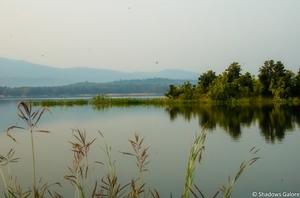 The dense forests of Satpura: Prologue