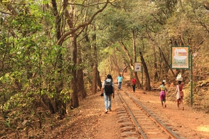 Matheran - by bus no. 11