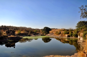 Ranthambore (Rajasthan) - Road trip from Delhi