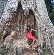 Raad Rahman Travel Blogger