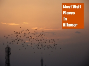 Backpacking in Bikaner