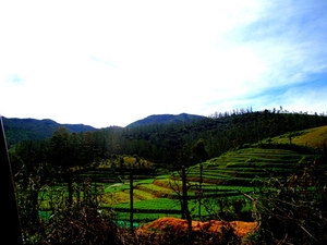 Road Trip to OOTY
