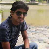 swaroop k Travel Blogger