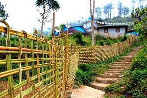 Back packing to North Bengal - Part 1 (Ichhe Gaon-Ramdhura.. 8 KM away from Kalimpong)