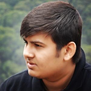 Harshil Nilesh Doshi Travel Blogger