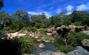 Things to do in Canberra to explore its natural beauty