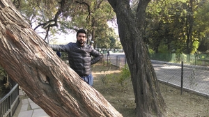 Mandeep Travel Blogger