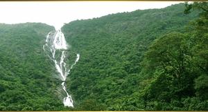Trip To Dudhsagar Waterfalls Goa