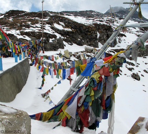 Journey to the Land of Peace: Tawang, Arunachal