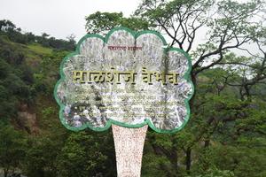 Malshej Ghat – Soothe your mind