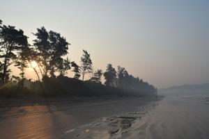Diveagar Beach: Away from restless life!