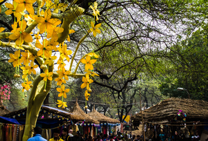 Surajkund Fair: Amalgamation of Fun, Art and Culture