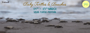 Velas Turtle Festival on 14th & 15th March with Mapping Journeys!