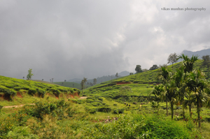Wayanad- The Land of Collective Beauty in Kerala
