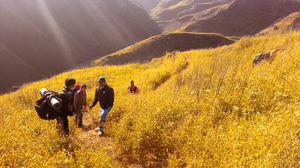 Dzukou Valley Trek, Nagaland