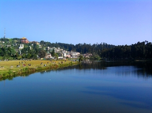 Add a dash of Mirik to Life!