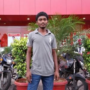 Ramakrishna Ram's Travel Blogger