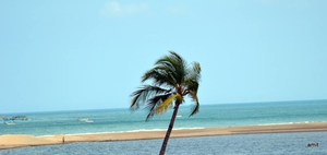Pondicherry trip