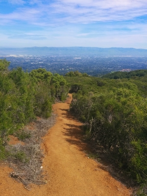 Hiking up black mountain (Bay Area)