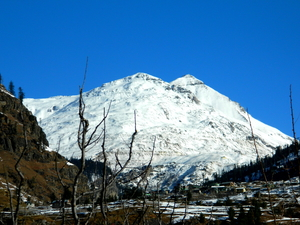 Romantic holiday in Manali