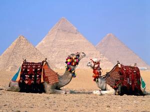 Jolie Gamal Travel Blogger