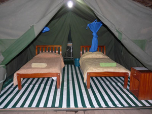 Enchoro Wildlife Camp Discounted Special Offers to Masai Mara