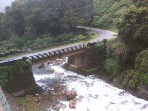 An unplanned roadtrip to Munnar