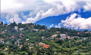 Living in the Hills- Kalimpong