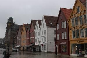 European Diaries- Bergen-Flam-Oslo