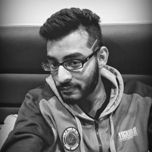 Ayush Baid Travel Blogger