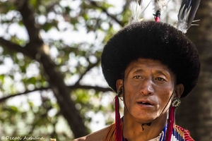 Meet the 16  tribes of Nagaland