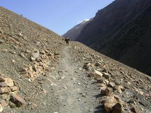 The Himalyan Wonders: My Journey through the Mystical Sumna Valleys