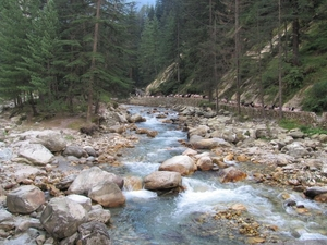 Parvati Valley and the Cream ReLoveution!