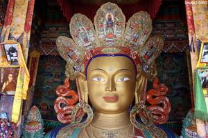 Monastic Ladakh - Exploring Monasteries of the Moon Land