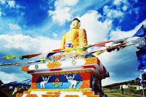 Going Solo- Himachal Pradesh