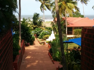 The best of new Goa