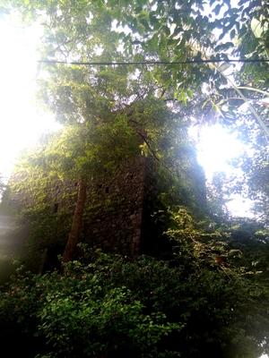 The Road Not Taken: Discovering Belapur Fort