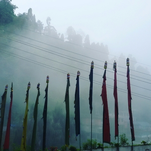 darjeeling by foot