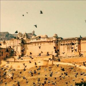 Dilemma Between Udaipur and Jodhpur
