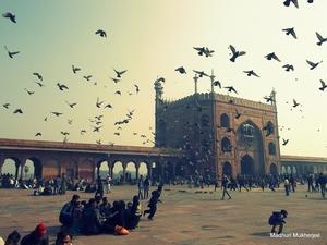 Tourist in my own city: Delhi Shenanigans