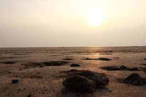 Day's drive to Diveagar beach, Aarvi beach and Srevardhan!!!