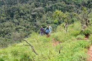 Mullayangiri - Tallest Peak in Karnataka