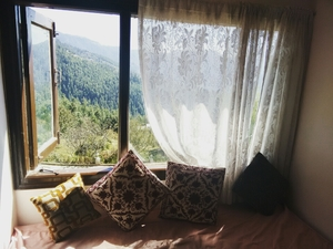 Road trip to Naldehra